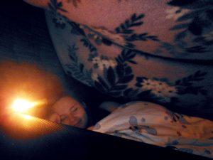 blanketfort 5